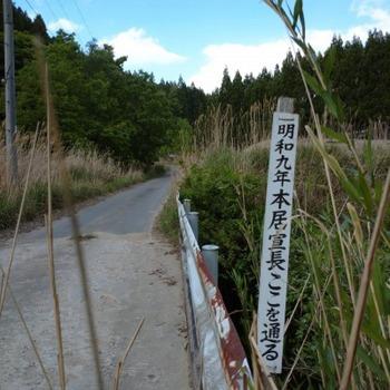 200514茶山調査10(菅笠日記10日目逆行程)15、白口峠下多気側.jpg