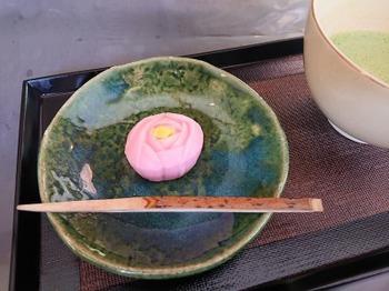 200518花フェスタ記念公園茶室「織部庵」08、駿河屋本店「薔薇」.JPG