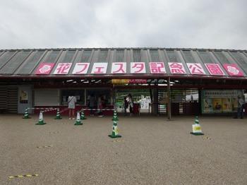 200518花フェスタ記念公園茶室「織部庵」16.JPG