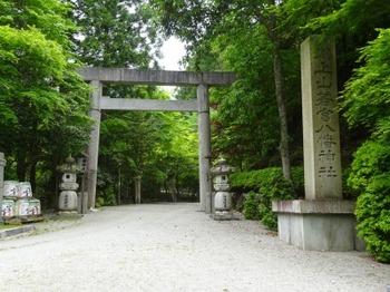 200522茶山調査「美杉町」08、川上山鳥居.JPG