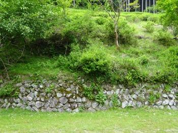 200522茶山調査「美杉町」12、茶園の石積み.JPG