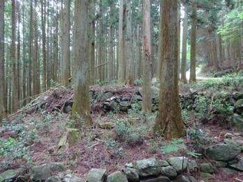 200522茶山調査「菅笠日記10日目行程」06、堀坂峠付近.JPG