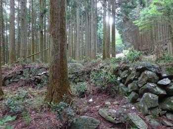 200522茶山調査「菅笠日記10日目行程」07、堀坂峠附近.JPG