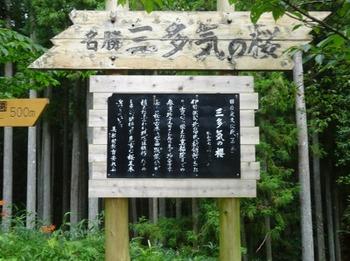 200806茶山合同調査12「三多気」02、三多気の桜案内看板.JPG