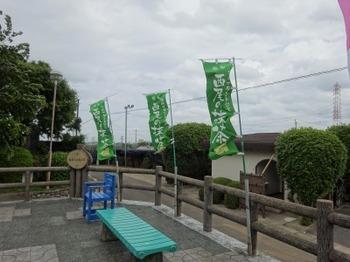 s_190518西尾の抹茶めぐり18、稲荷山茶園公園.JPG